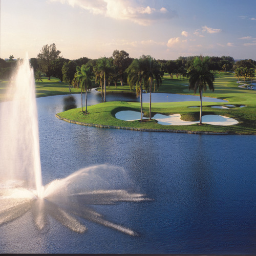 Campeonato De Golf En El Mundo- Miami